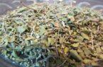 خرید آویشن خشک از عطاری آنلاین